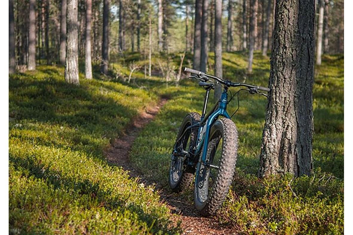 De ce sunt bicicletele mtb fat-bike, potrivite pentru orice?